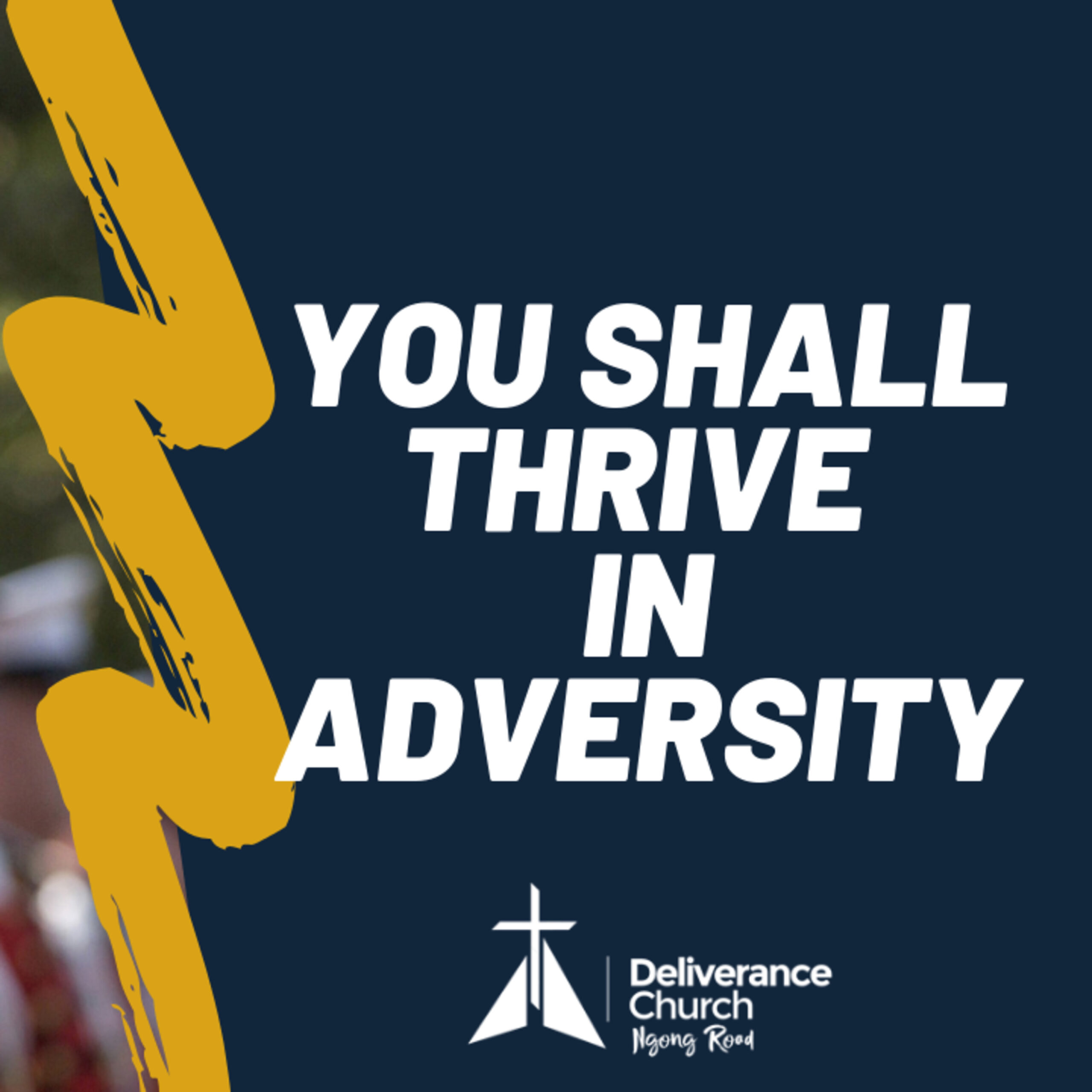 You will Thrive in Adversity